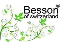 Besson of Switzerland